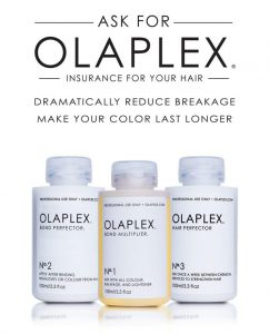 the-olaplex-system- winter - hair - care